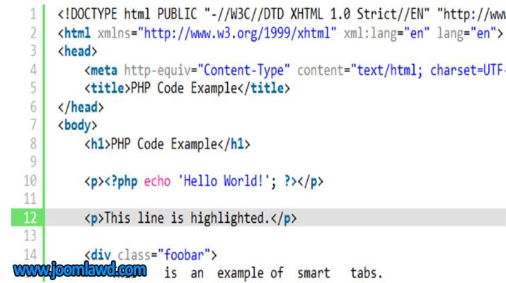 افزونه SyntaxHighlighter Evolved نمایش صحیح کدها در وردپرس